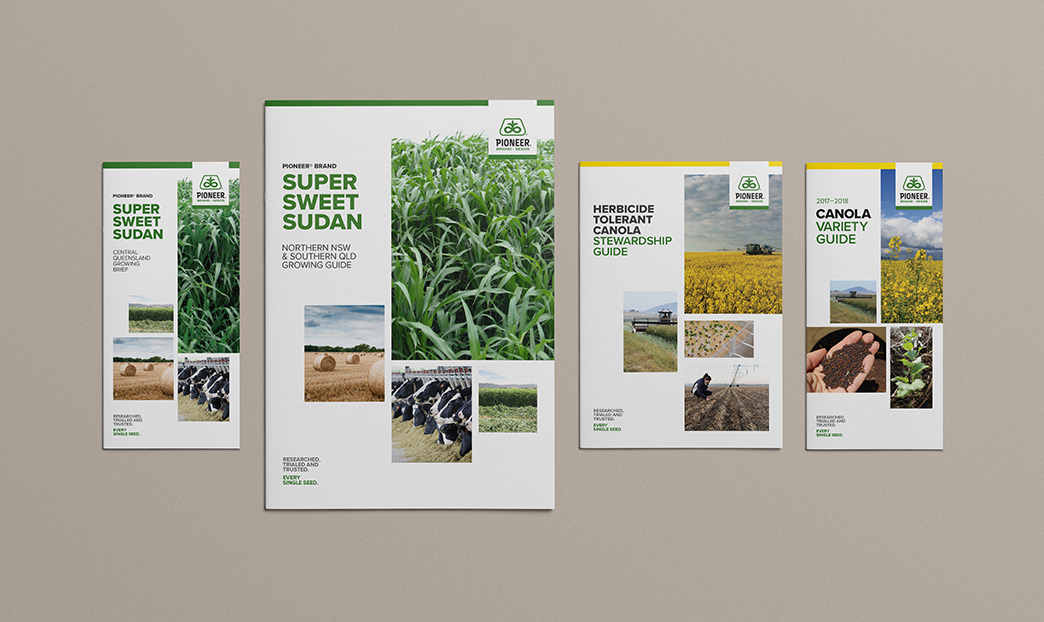 Brochure covers