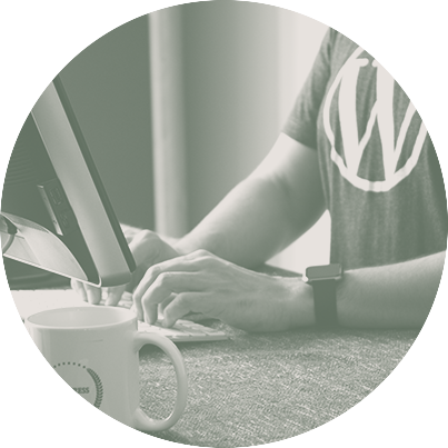 Managing security for your business' WordPress website: A guide for website owners and editors (Part 1)